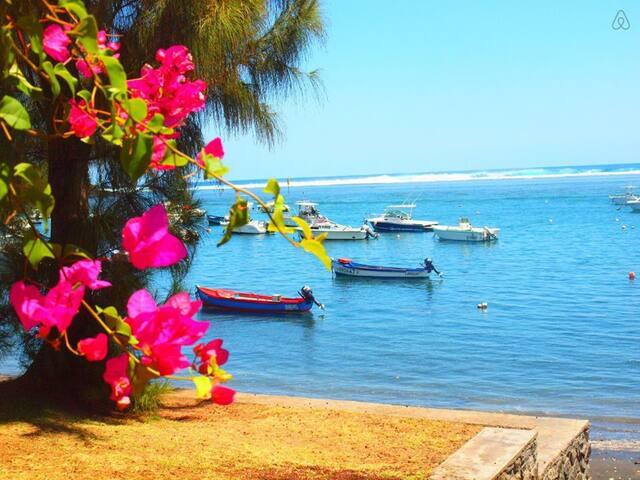 P'tit coin de paradis face au lagon - l'Étang-Salé les Bains - Byt