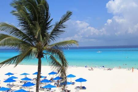 Jungle Scene by Beach&Ruins-2Br,Wsh - Playa del Carmen
