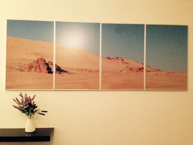 Room1 : Mongolia, shot by wani 2010