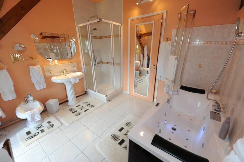 La salle de bains Traviata avec douche et baignoire, ainsi que son jaccuzi