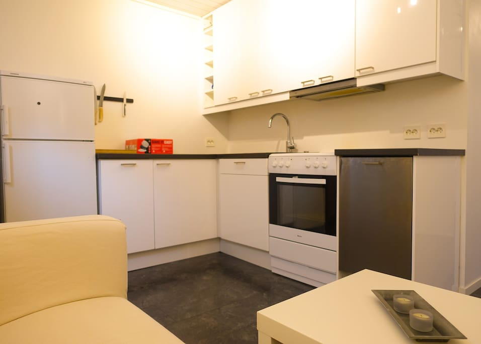 Well equipped kitchen with stove, fridge, freezer and dishwasher