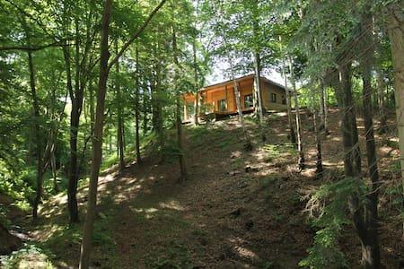 Ysgubor Lodge - Meifod - Chalet