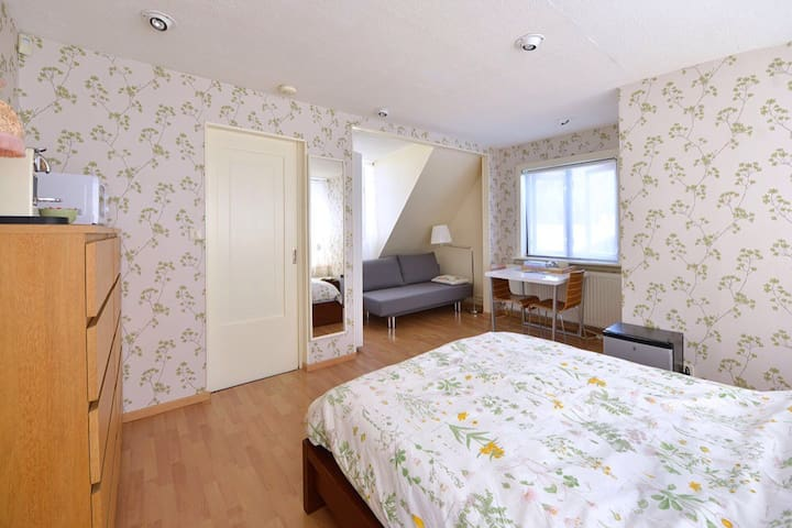 Big, bright room; privat bathroom &entrance