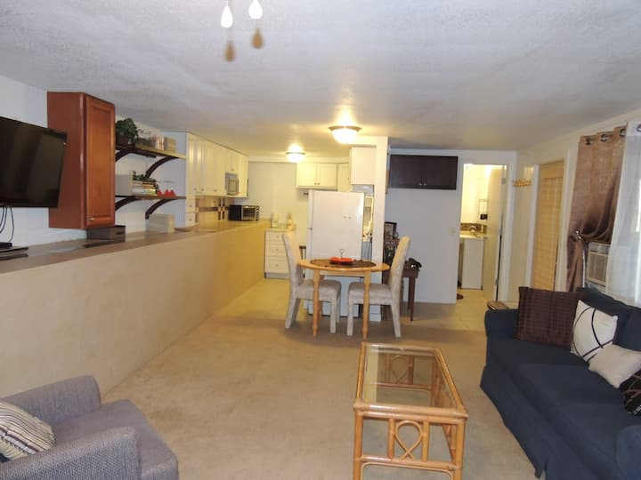 Very Large Studio Like-apt room. Centrally located