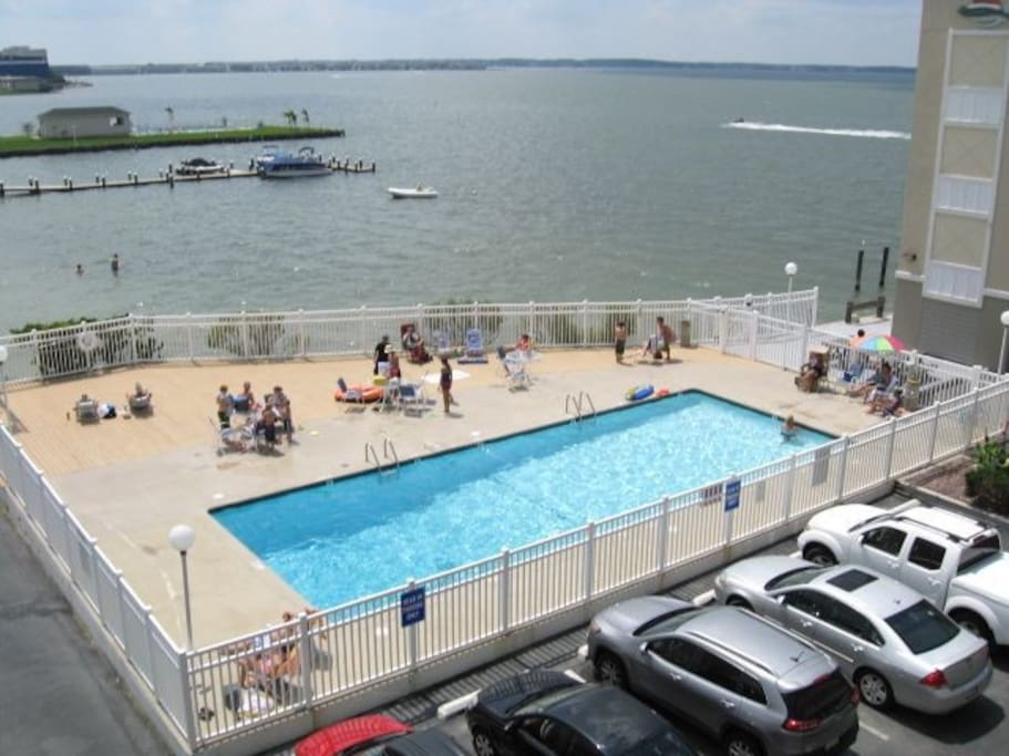 Bay Front Pool!