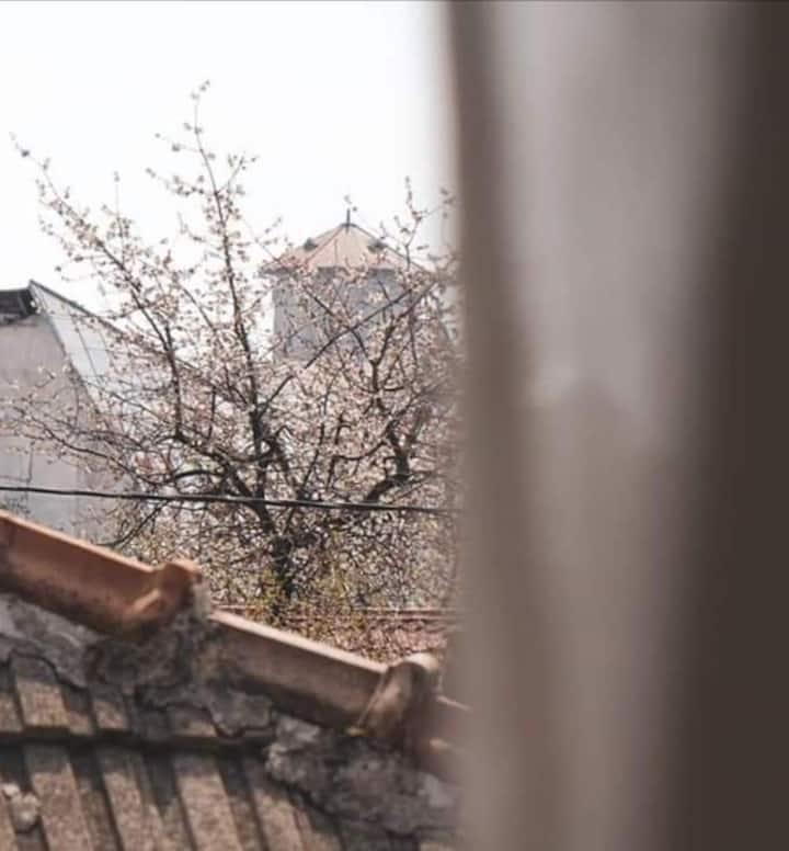 Beautiful house in a garden, Târgu Jiu