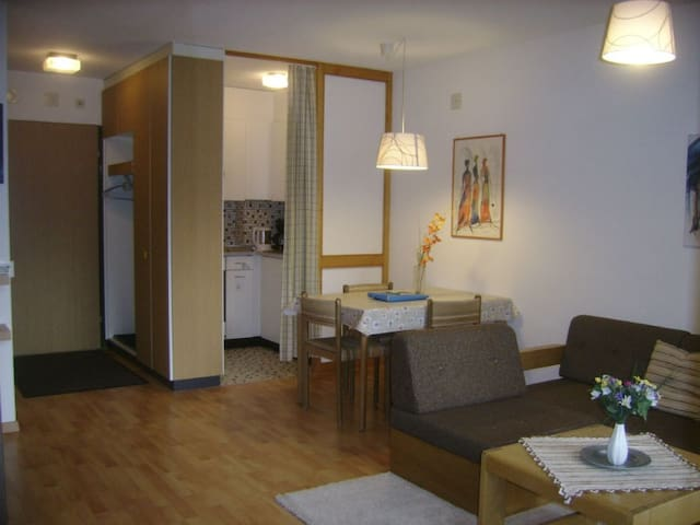 Ferienwohnung Gabriela 22 Defuns Brigels, (Breil/Brigels), 65047B, Apartment with Shower/Bath/Toilet, for max. 2 People