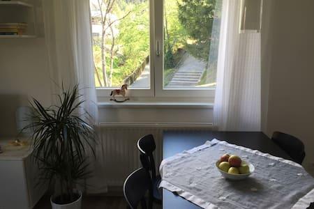 Appartement Ida - Innsbruck - Byt