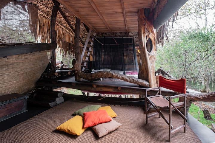 Banyan Lodge, Yala