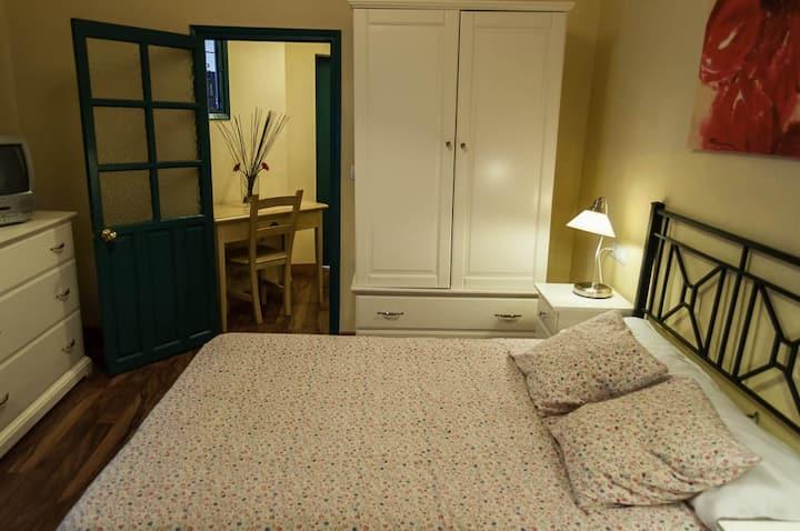 Estudio cama matrimonial con baño y mini cocina