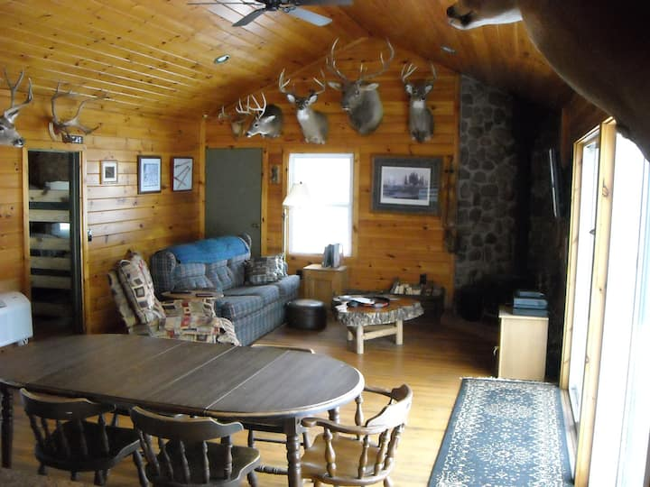 Relaxing Getaway Cabin...Explore The Finger Lakes!
