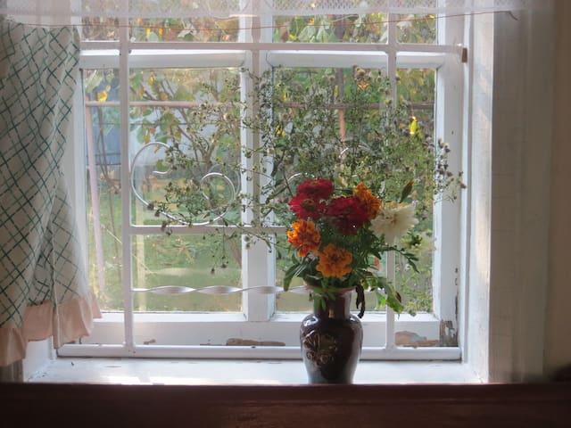 A room in a house in the countryside (Eco tourism) - Kyiv, Zgurovskii raion, village Paskivshina - Casa