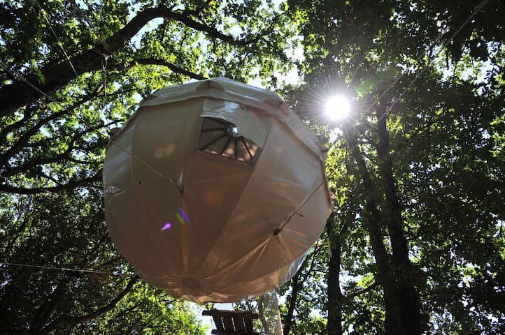 Cocoon Tree Tent for two by the lake - Montolieu