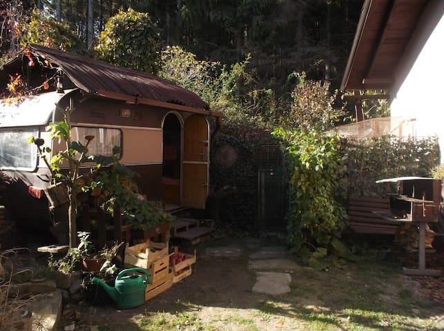 Karavan v Roští
