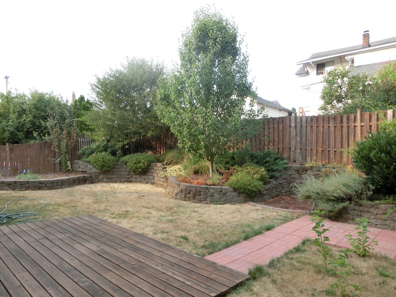 Large back yard area available