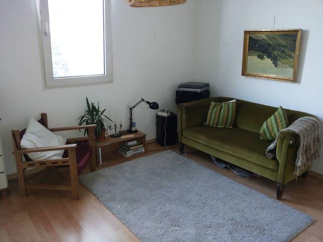 Zentralgelegene und helle Wohnung - Konstanz - Departamento