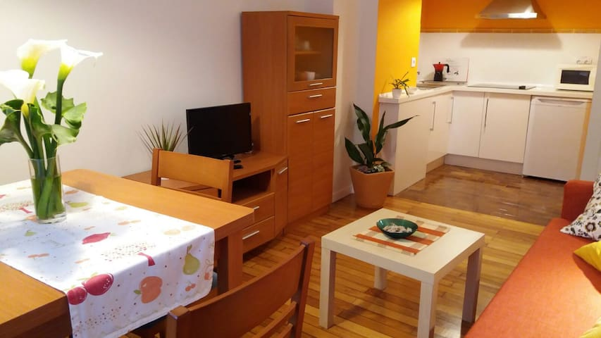 Friendly apartment in the old town of Santiago