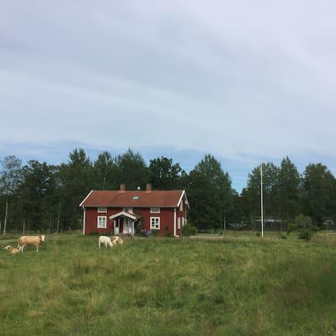 Svenstorp / Great Swedish Nature - Reftele