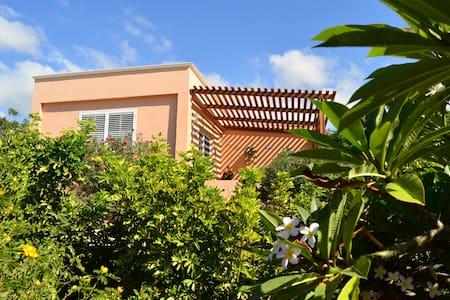DHARMA HOUSE - Guía de Isora - Dům
