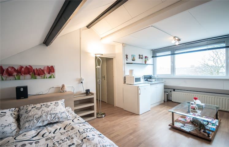 cozy studio at Amsterdam Schiphol - Uithoorn - House