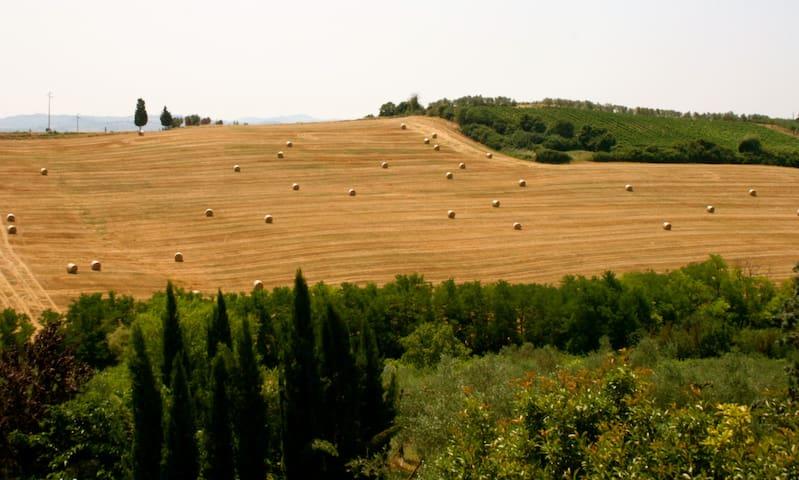 Tuscany Holiday Home - Lola