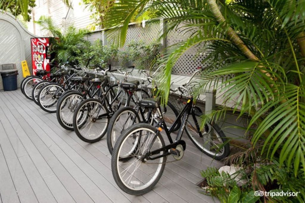 Bicycle rental available