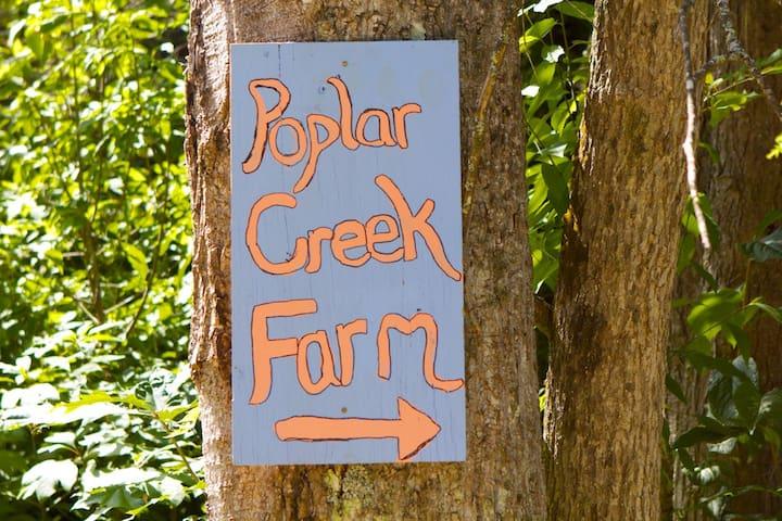 Creekside Mountain Farm Retreat: House & Apartment