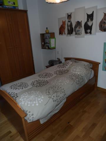 Chambre à 12 mn de Strasbourg - Brumath - Departamento