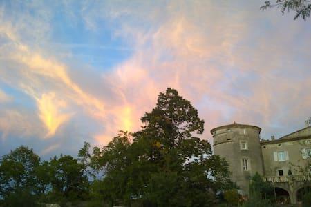 La vie de Château en Ardèche ! - Chomérac - Slott