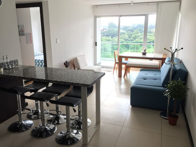 New and Modern 2 Bedroom Apartment with Balcony