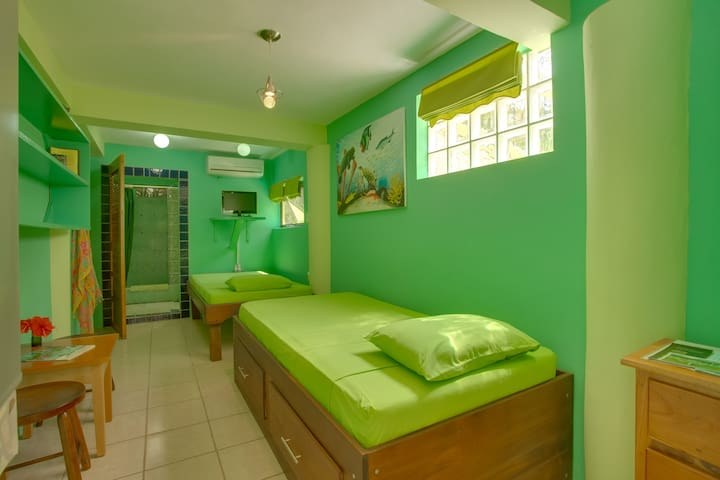 Casa Placencia-Garden Room #1-twins - Placencia - Bed & Breakfast