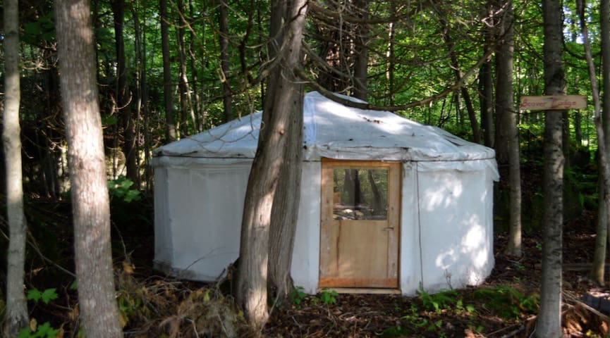 Charming Yurts in the forest - Georgian Bluffs - Iurta