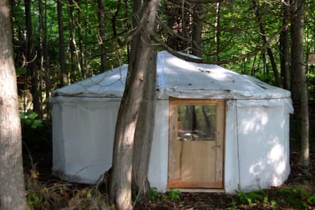Charming Yurts in the forest - Yurt