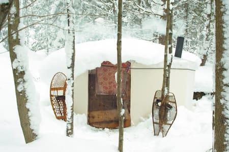 Charming Yurts in the forest - Georgian Bluffs