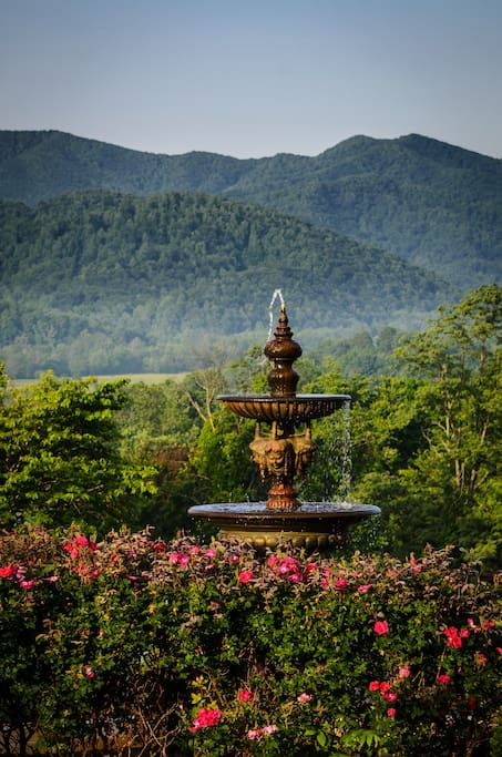 Situated in The Blue Ridge Mountains - this is the view from the front porch of the inn.