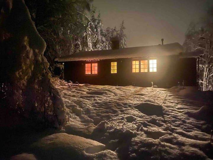 Norwegian living: Cabin in the forest of Oslo