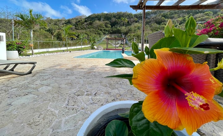 Beach Apt #2 - Pool, Gated Access-Near Jobos Beach