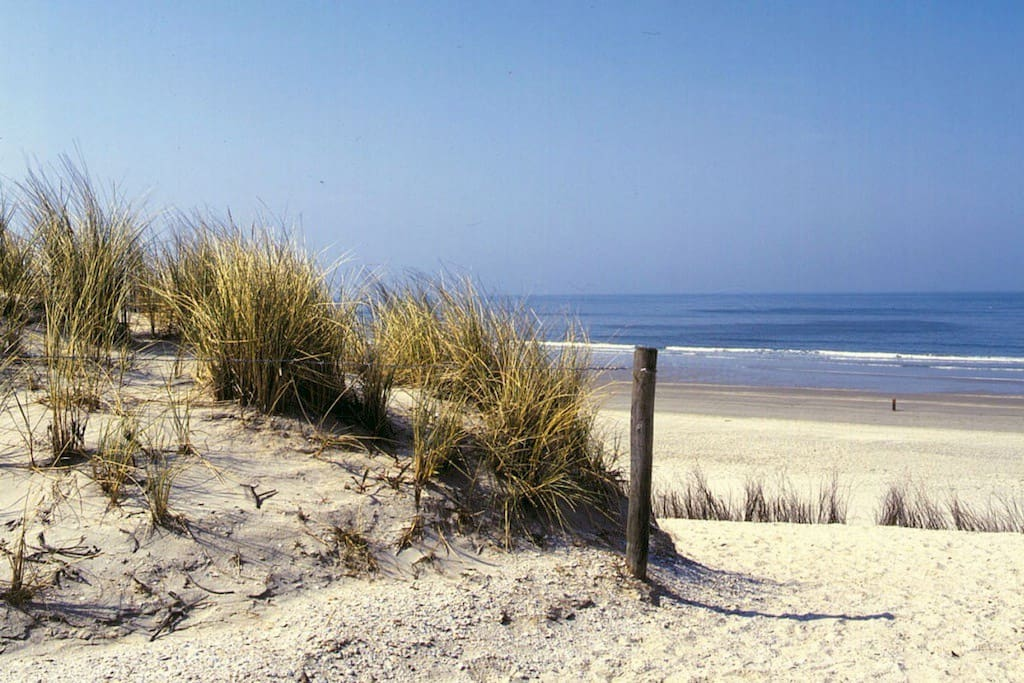 Beach: IJmuiderstrand, 5/10 minutes away. You can also go by bus or bike.