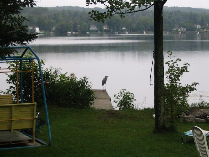 Bord de l'eau lac Magog, idéal pour télétravail !