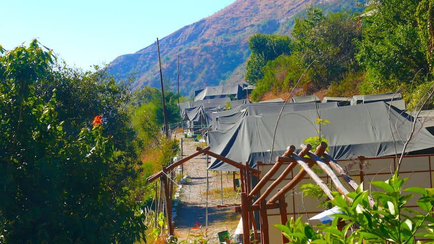 Swiss Tent | Viraatkhai - Chakrata