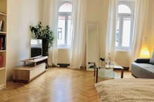 A big modern room in the heart of vienna