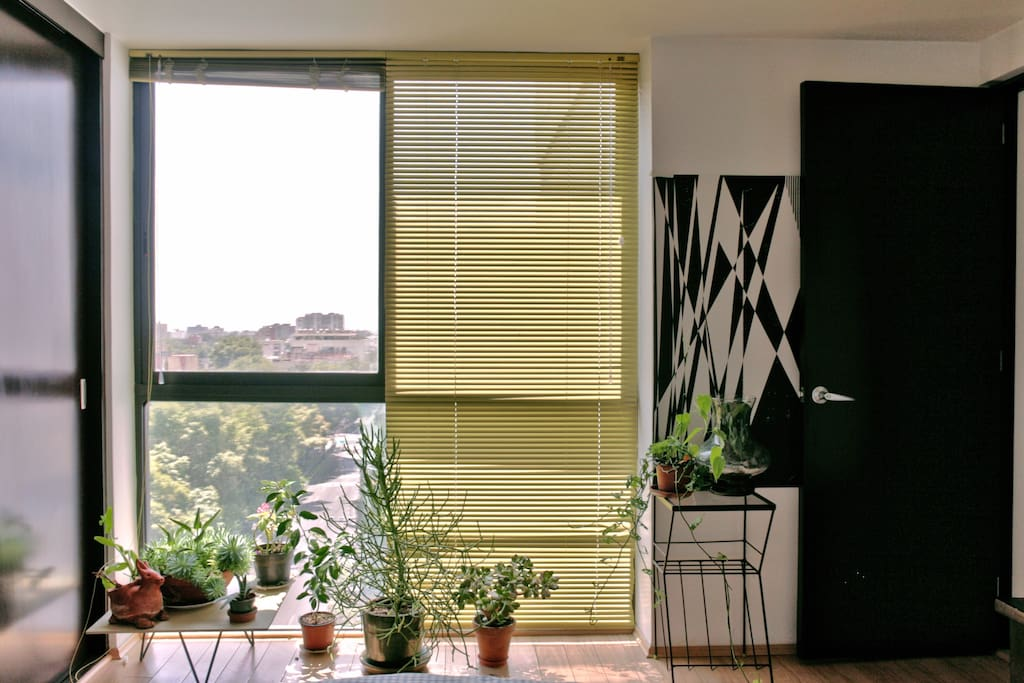 Big window with blinds on your room