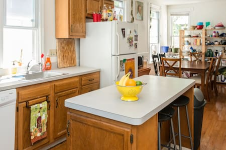 East Rock Near Yale w/ Private Bath - New Haven - Apartment