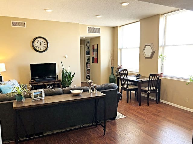 Beautiful and Spacious Condo in Downtown Lincoln