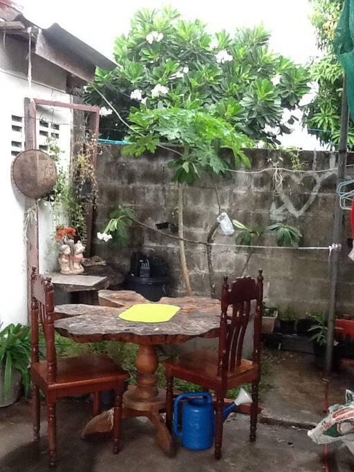 Small garden outside.