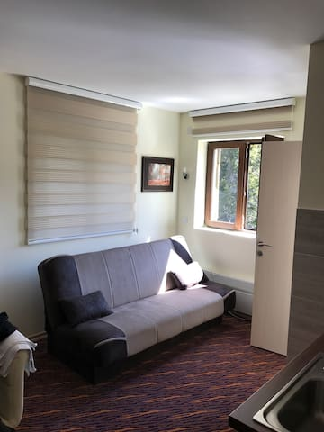 Cozy apartment for 4 near ski slope - Kopaonik - Apartment