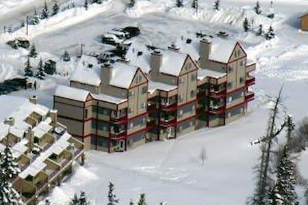 Copper Mountain Ski Condo with terrific views