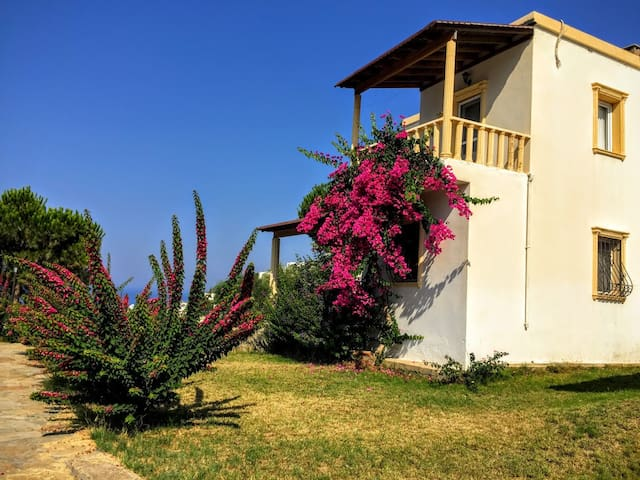 Beautiful colors of nature outside the villa