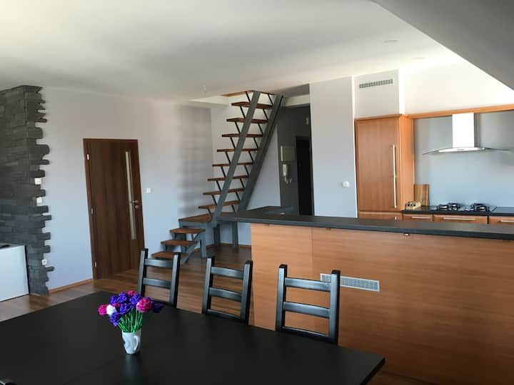 Spacious apartment in town centre Nove Zamky