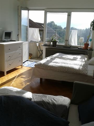 Sunny and cosy appartment - Lund - Apartment
